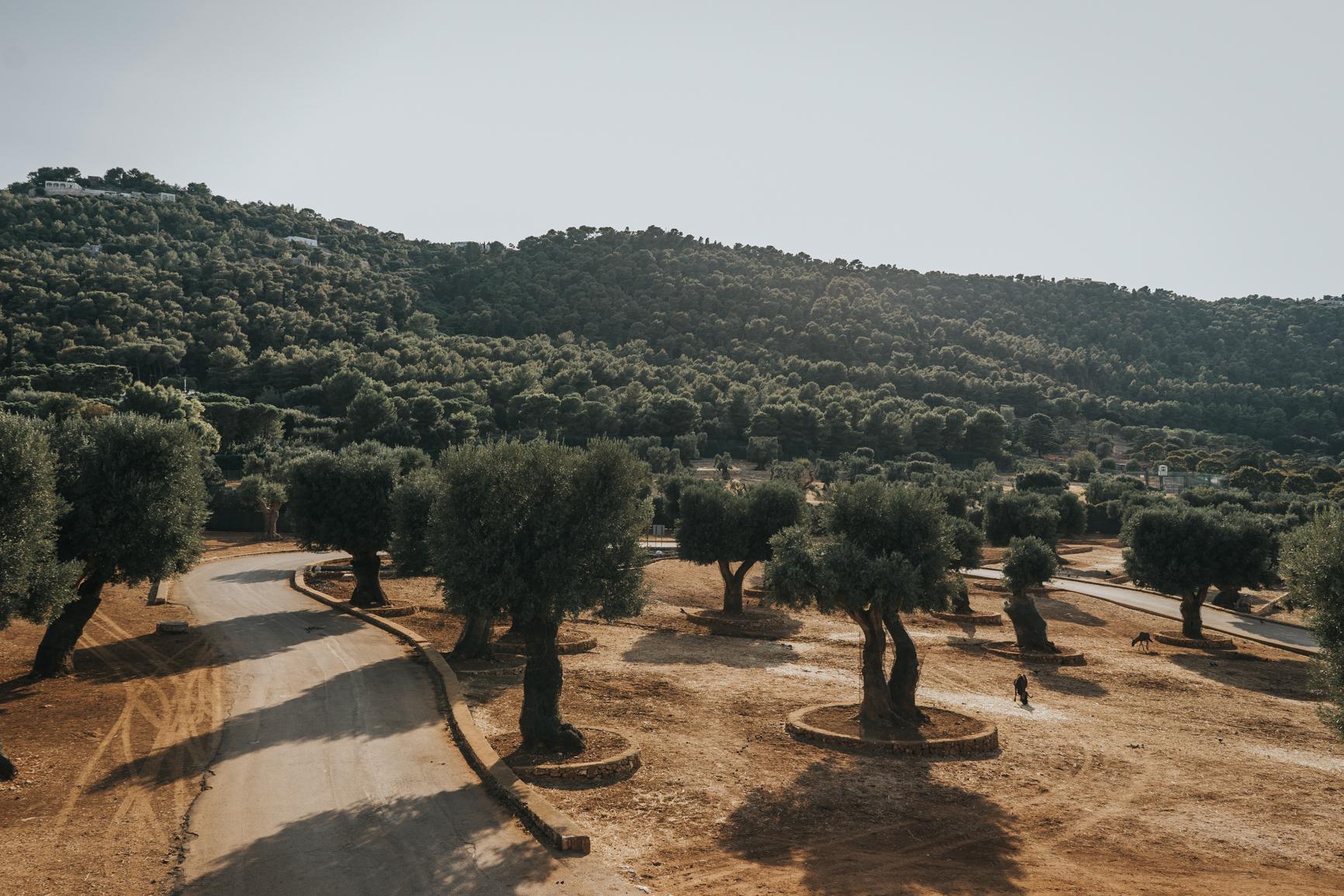 Puglia (8)